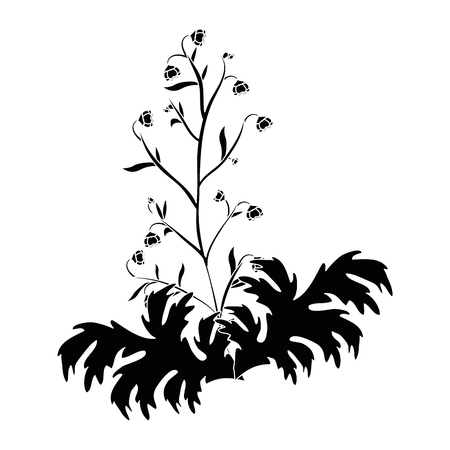 beautiful flowers icon over white background vector illustration Stock fotó - 80046628