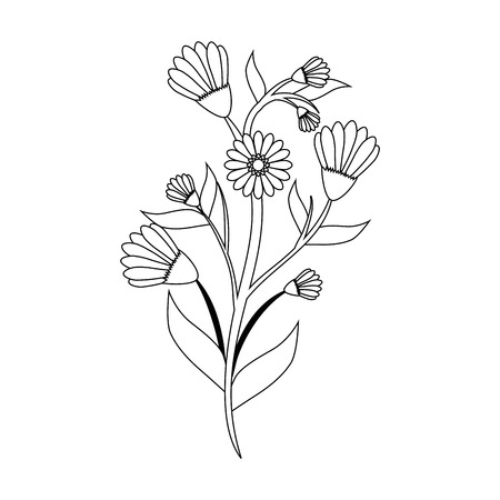 beautiful flowers and leaves icon over white background vector illustration Ilustrace