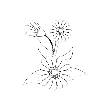 beautiful flower icon over white background vector illustration Stock fotó - 80049890