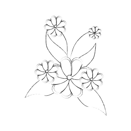 beautiful flowers icon over white background vector illustration