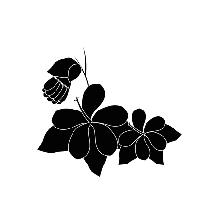 flowers and leaves icon over white background vector illustration Stock fotó - 80050013