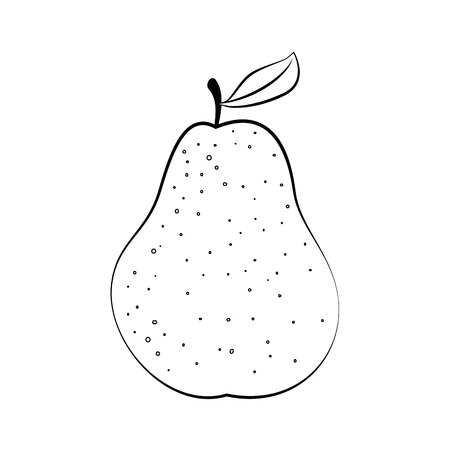 market gardening: pear fruit icon over white background vector illustration
