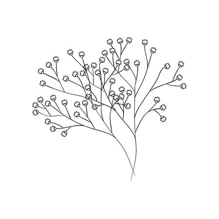 Beautiful ornamental flowers icon vector illustration graphic design Zdjęcie Seryjne - 80124202