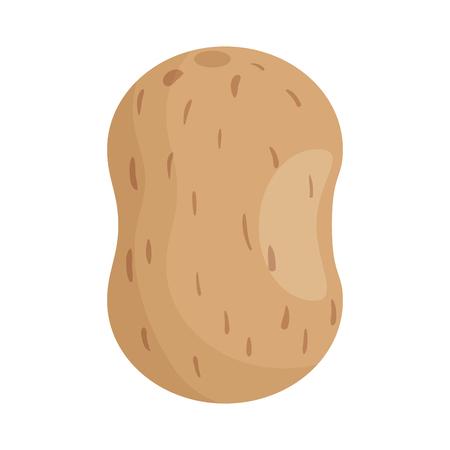 Potato healthy food icon vector illustration graphic design