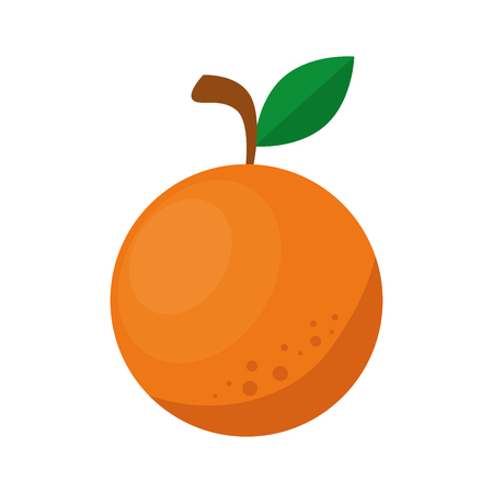 Orange citric fruit icon vector illustration graphic design