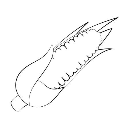 Corn fresh vegetable icon vector illustration graphic design Ilustração