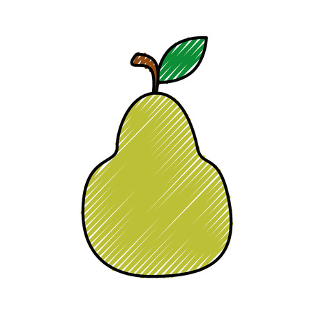 market gardening: Delicious pear fruit icon vector illustration graphic design
