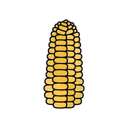 Corn fresh vegetable icon vector illustration graphic design Illusztráció