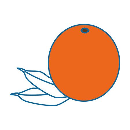 오렌지 citric 과일 아이콘 벡터 일러스트 그래픽 디자인 스톡 콘텐츠 - 80196784