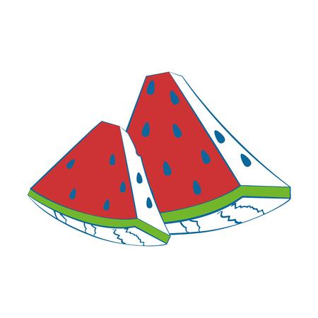 Watermelon delicious fruit icon vector illustration graphic design