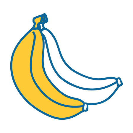 Sweet bananas fruit icon vector illustration graphic design Illustration