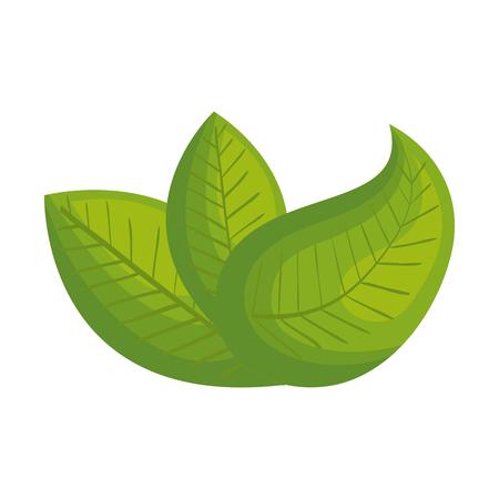 deja las hojas icono de ecología ilustración vectorial de diseño Ilustración de vector