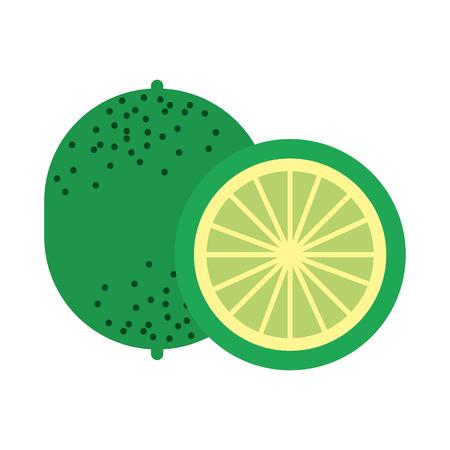 lemon tropical and exotic fruit vector illustration design Ilustração