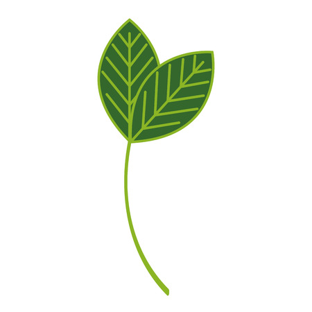 Leafs plante écologie icône illustration vectorielle conception Banque d'images - 80240509