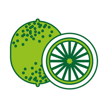 lemon tropical and exotic fruit vector illustration design Illustration