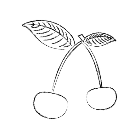 cherry tropical and exotic fruit vector illustration design Ilustração
