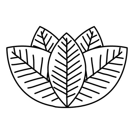 Leafs plante écologie icône illustration vectorielle conception Banque d'images - 80255810