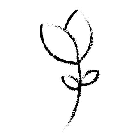 COlogie végétale leafs conception icône illustration vectorielle Banque d'images - 80254177