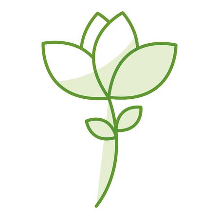 COlogie végétale leafs conception icône illustration vectorielle Banque d'images - 80239933