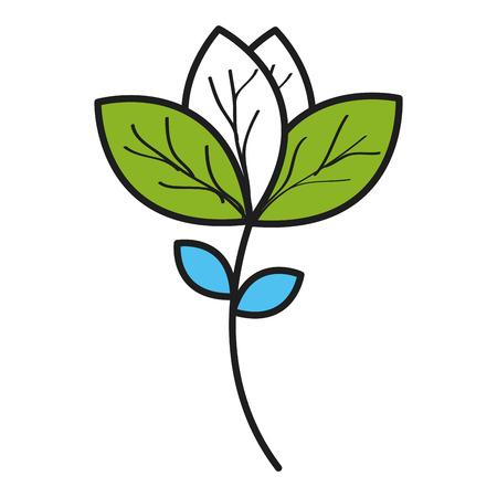 Leafs plante écologie icône illustration vectorielle conception Banque d'images - 80239922