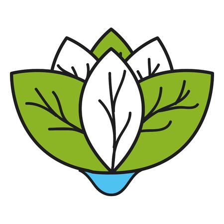 COlogie végétale leafs conception icône illustration vectorielle Banque d'images - 80241450