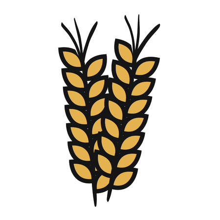 A wheat spike isolated icon vector illustration design