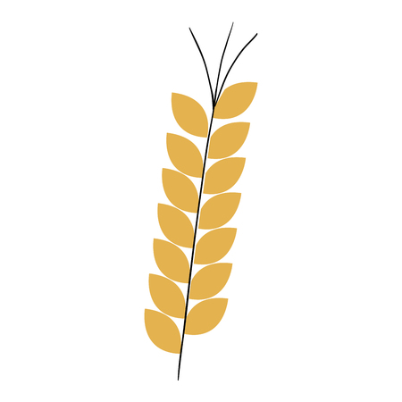 wheat spike isolated icon vector illustration design Illusztráció