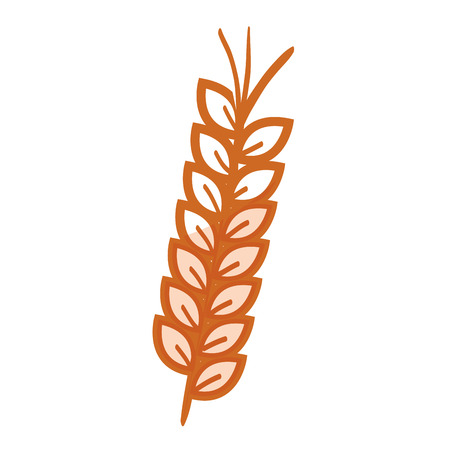 wheat spike isolated icon vector illustration design Illustration