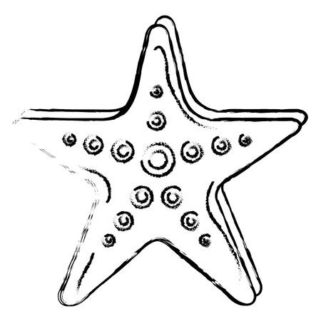 starfish tropical summer icon vector illustration design Illusztráció