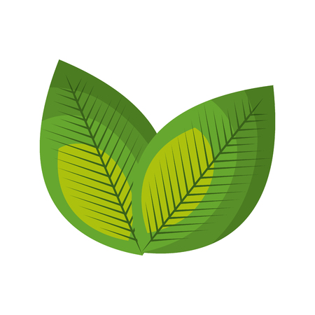 A leafs plant ecology icon vector illustration design. Illustration