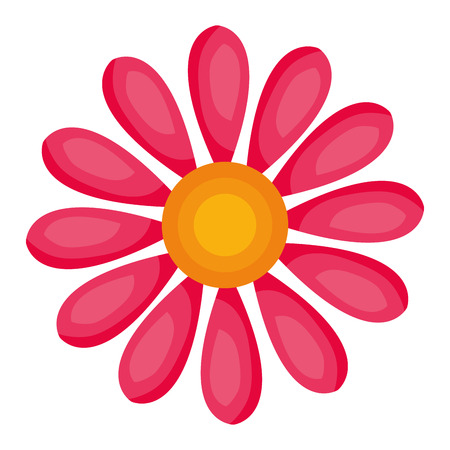 cute sunflower isolated icon vector illustration design Stok Fotoğraf - 80347819