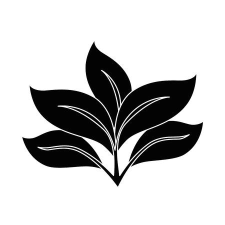 Plant with leaves icon vector illustration graphic design Illustration