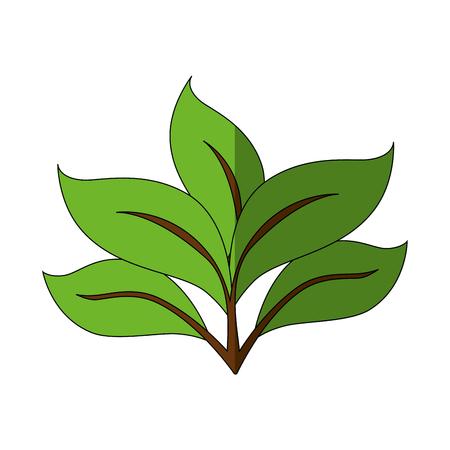 Planta con hojas icono ilustración vectorial diseño gráfico Foto de archivo - 80449279