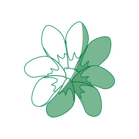 Beautiful flower decoration icon vector illustration graphic design