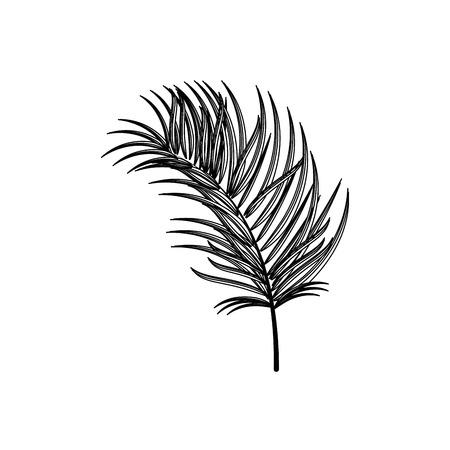 cultivate: Plant ecology symbol icon vector illustration graphic design Illustration