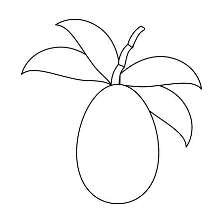 Tree tomato fruit icon vector illustration graphic design