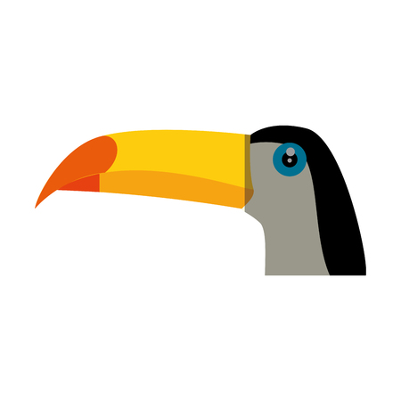 Wild tucan cartoon icon vector illustration graphic design