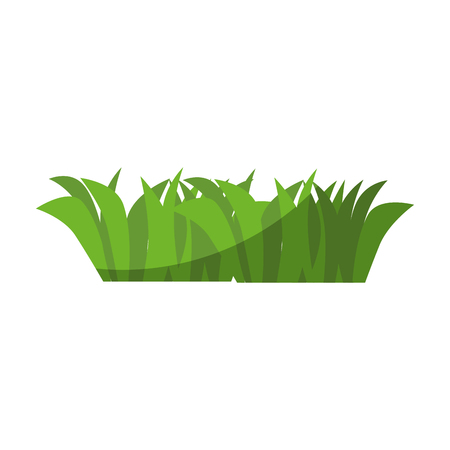 Grass garden isolated icon vector illustration graphic design
