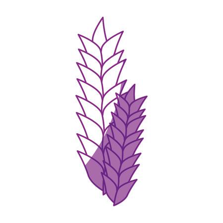 Alimentation à base de céréales de blé Illustration vectorielle graphique graphique Banque d'images - 80636532