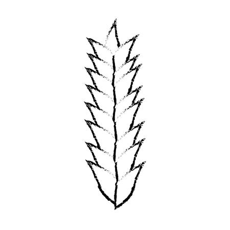 Alimentation à base de céréales de blé Illustration vectorielle graphique graphique Banque d'images - 80636567
