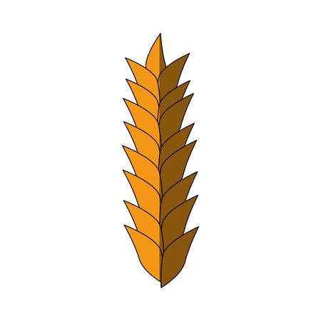 Wheat cereal food icon vector illustration graphic design