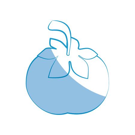tomato vegetable icon over white background vector illustration