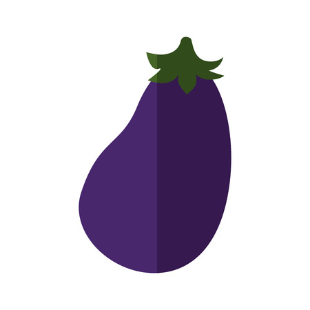 eggplant vegetable icon over white background vector illustration Illustration