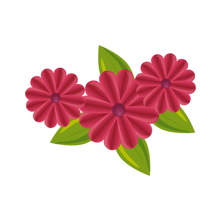 beautiful flowers icon over white background colorful design vector illustration