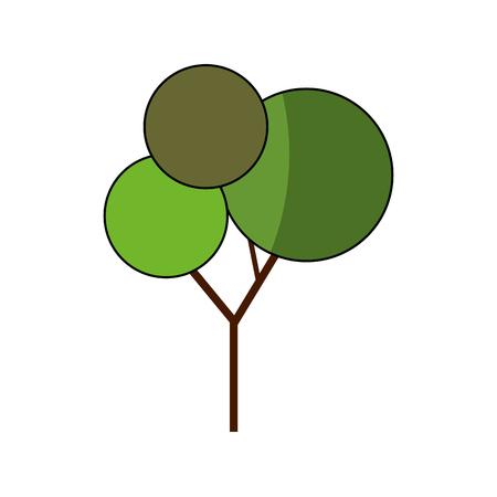 colorfull: nature tree symbol icon vector graphic illustration