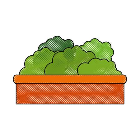 isolated decorative bush icon vector graphic illustration
