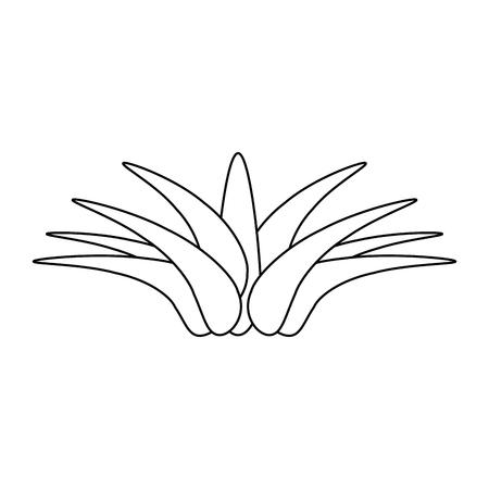 Savane isolé plante icône vector illustration graphisme Banque d'images - 80688660