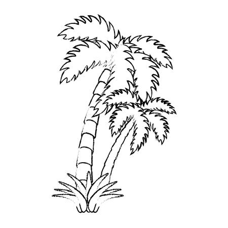 隔離されたビーチ パーム アイコン ベクトル図  イラスト・ベクター素材
