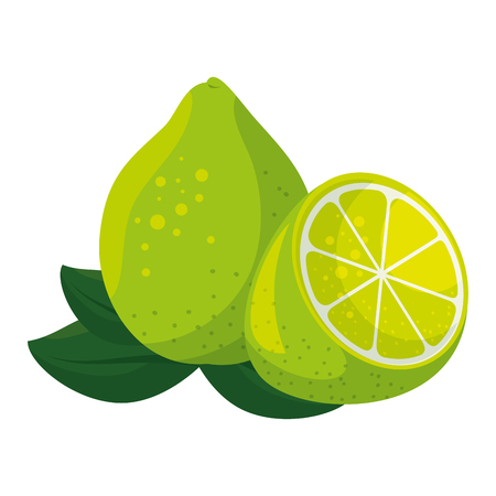 isolated acid lemon icon vector illustration graphic design