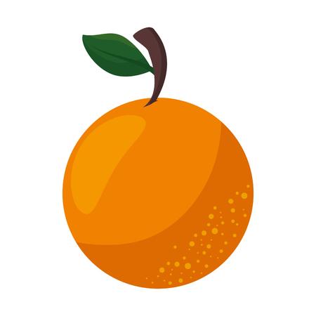 절연 달콤한 오렌지 아이콘 벡터 일러스트 그래픽 디자인 스톡 콘텐츠 - 80722811